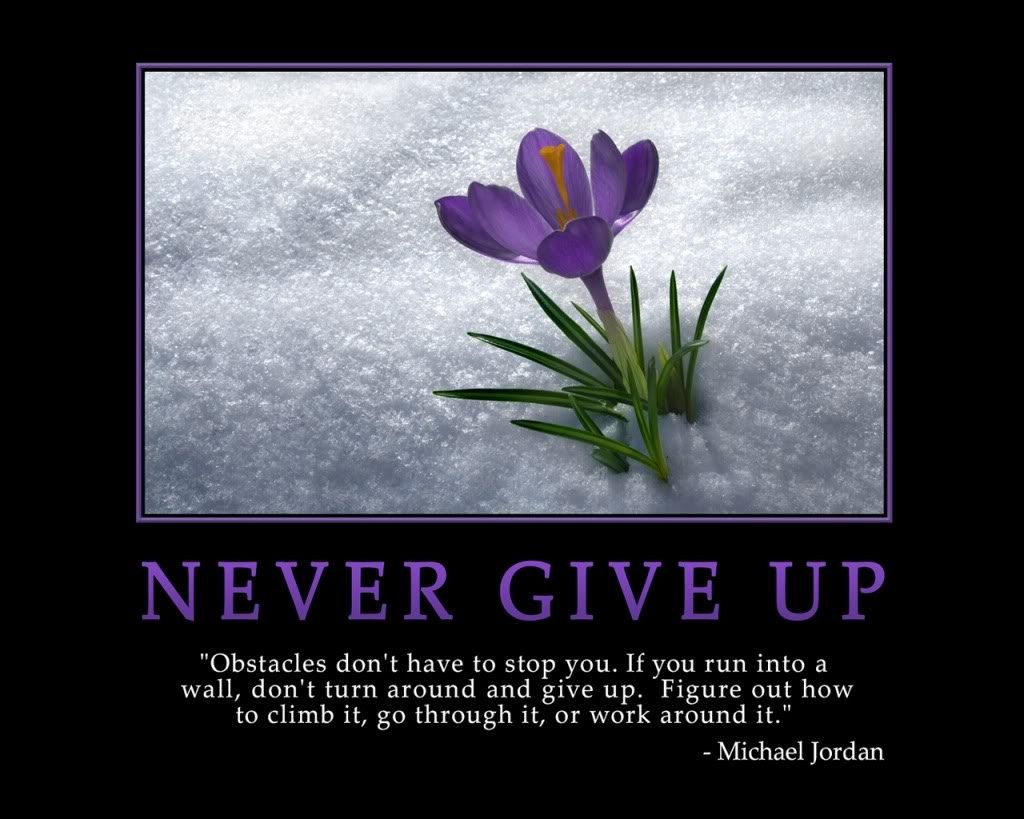 never give up inspiring quotes pinterest
