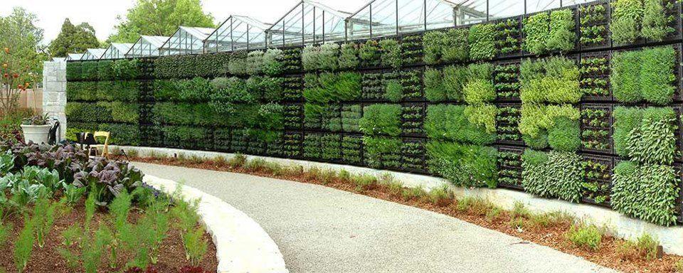 Herb Garden Wall eco living Pinterest