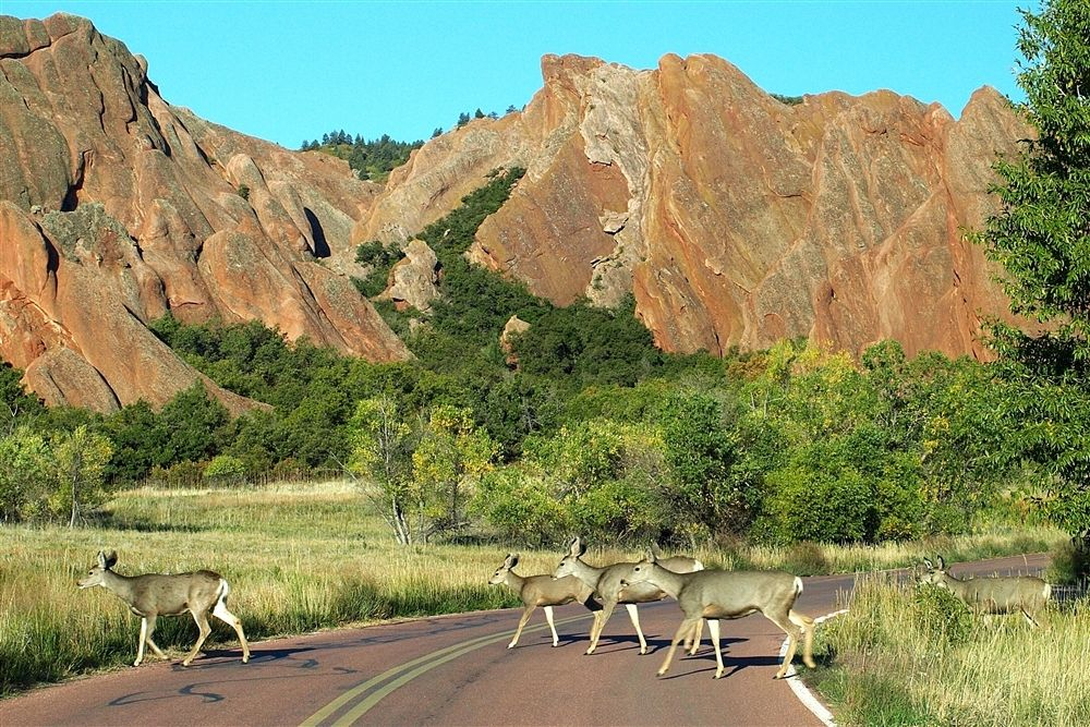 Colorado State Park Monument