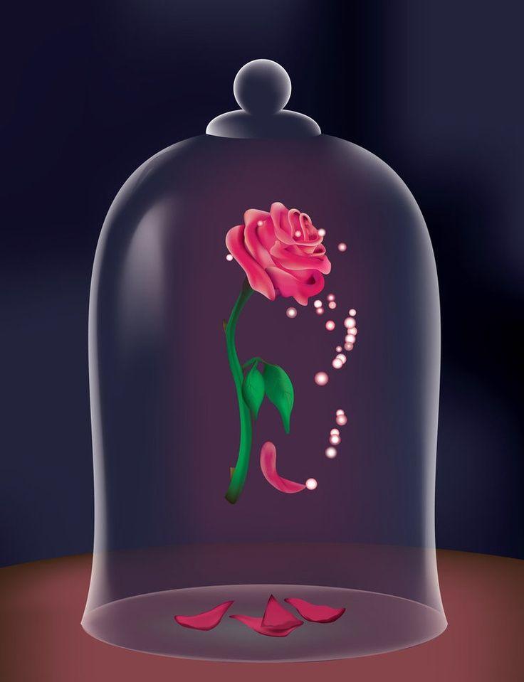 Роза из красавицы и чудовища