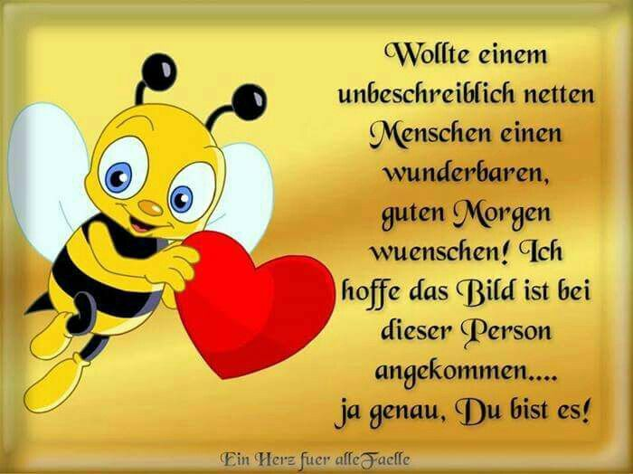 Guten Morgen (von) | Sayings | Good morning, Good night und Good ...