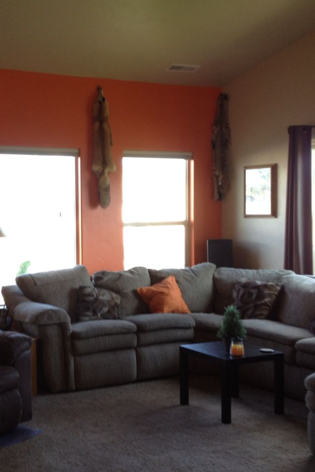 Orange Accent Wall Living Room Pinterest