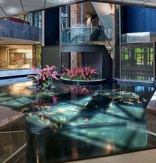 Fish tank floor sooo cool house ideas inside and out for Floor fish tank