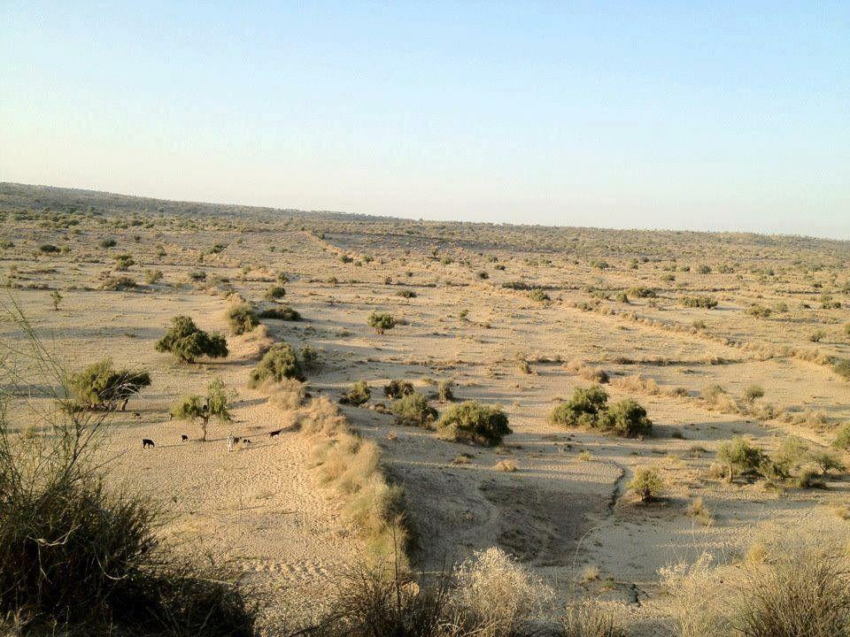 Thar, sindh | pakistan | Pinterest