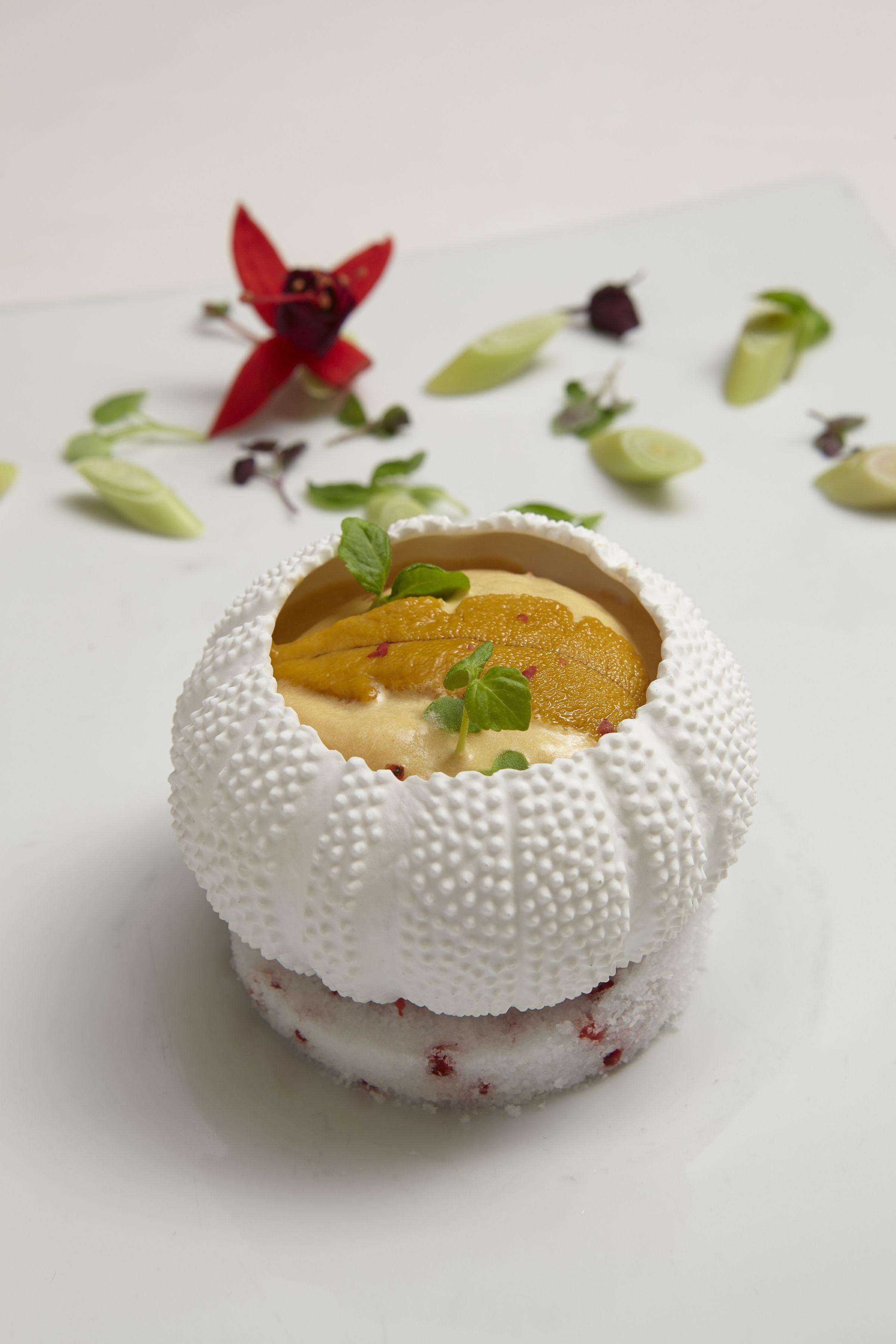 oursin en Gelee de Citronelle | Meet Gregory Pugin, Chef de Cuisine ...