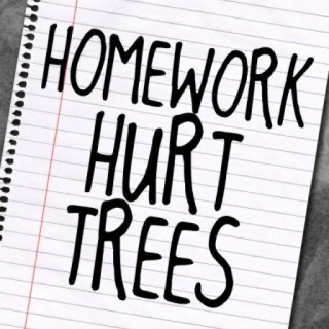 The dpsg international holiday homework photo 3