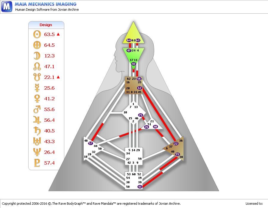 Дизайн человека манифестор 5 1