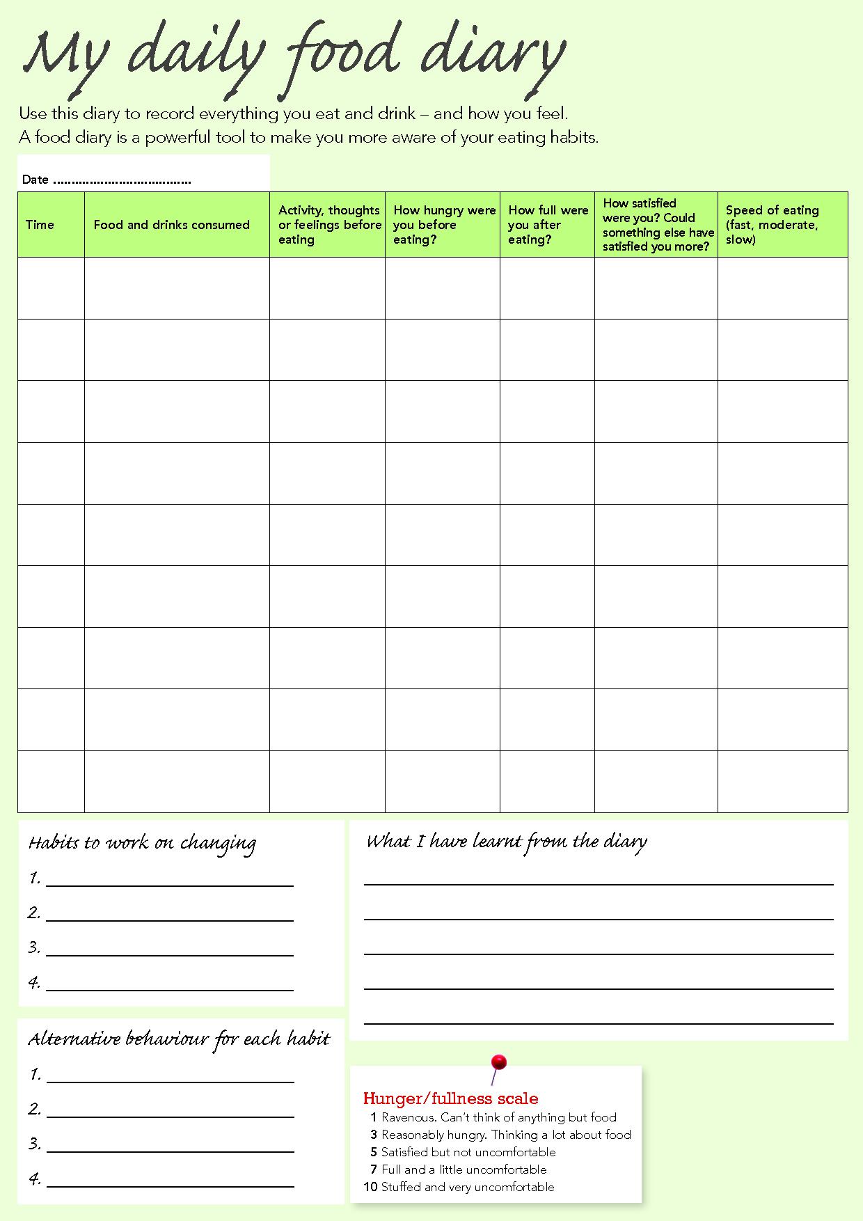Daily Diary Excel – Printable Editable Blank Calendar 2017