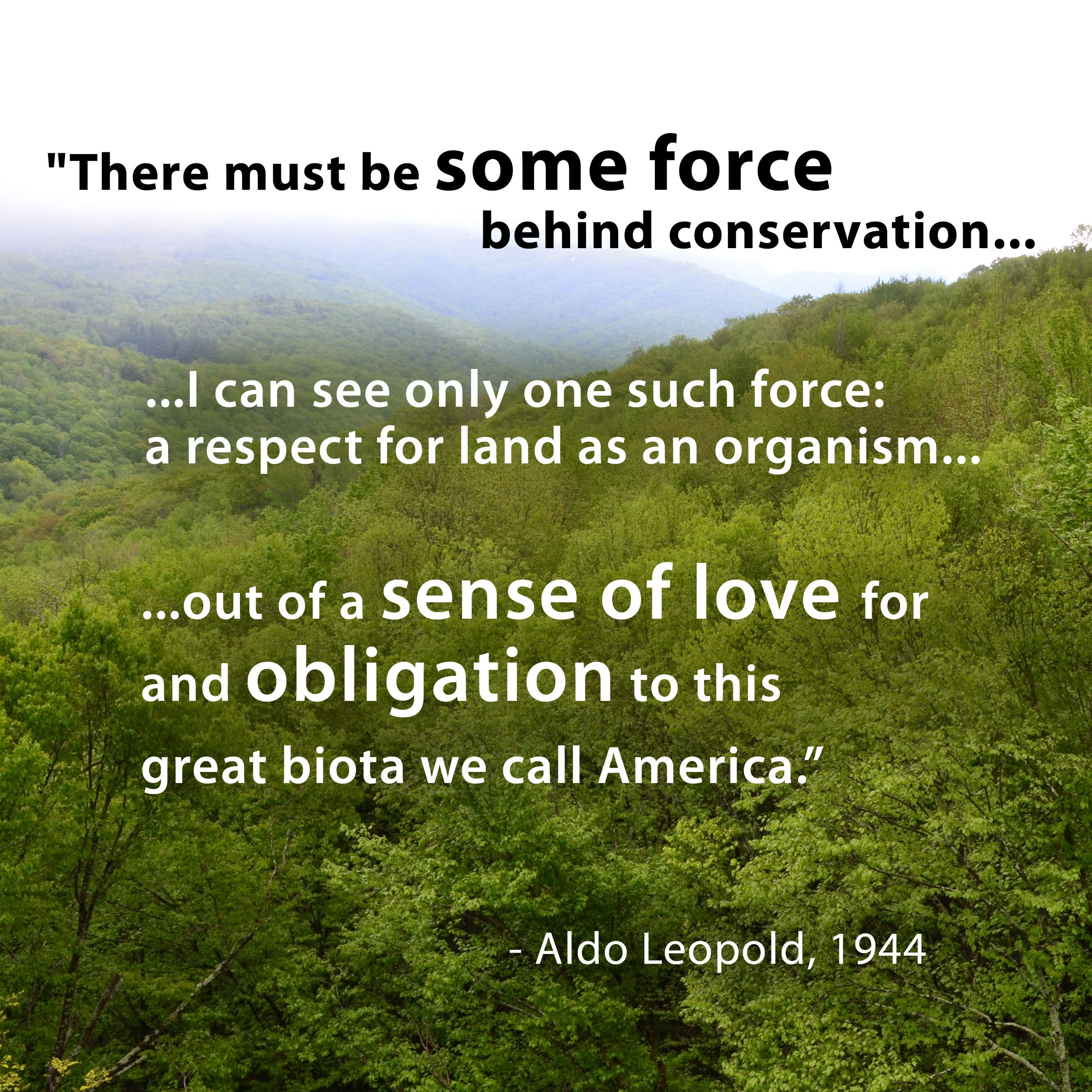 aldo review land ethic Aldo leopold in review of our natural resources and their conservation (1937) the wild goose chase (and this was fun to put on expense forms) was a bringing together of leaders in timber resource management, environmental community and wildlife agencies—all folks grounded in leopold's land ethic—to see if we.