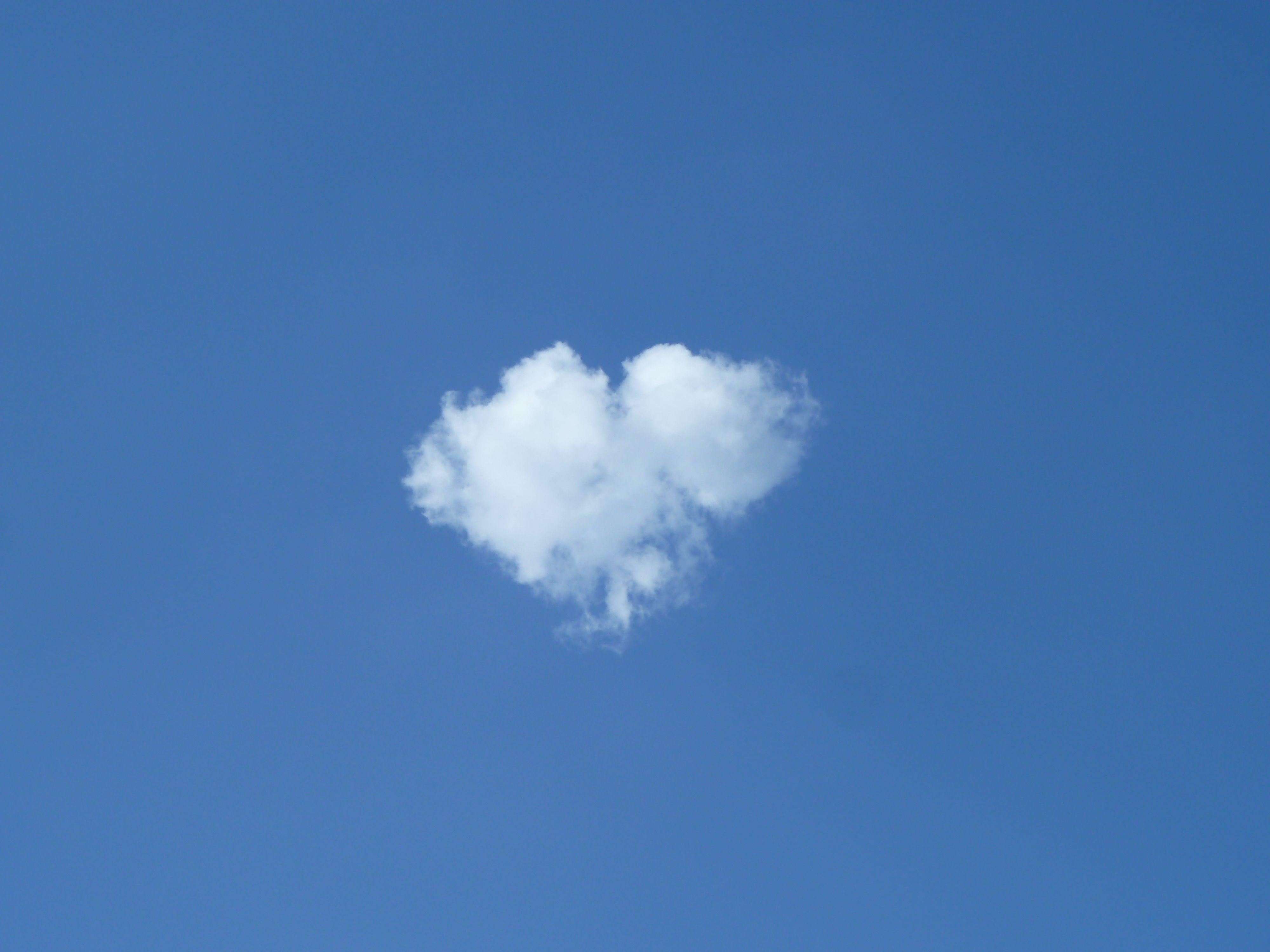 my creative cloud