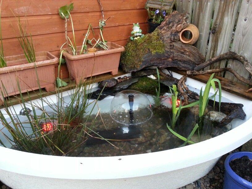 Corner bath pond garden ponds and water features pinterest for Garden pond tub