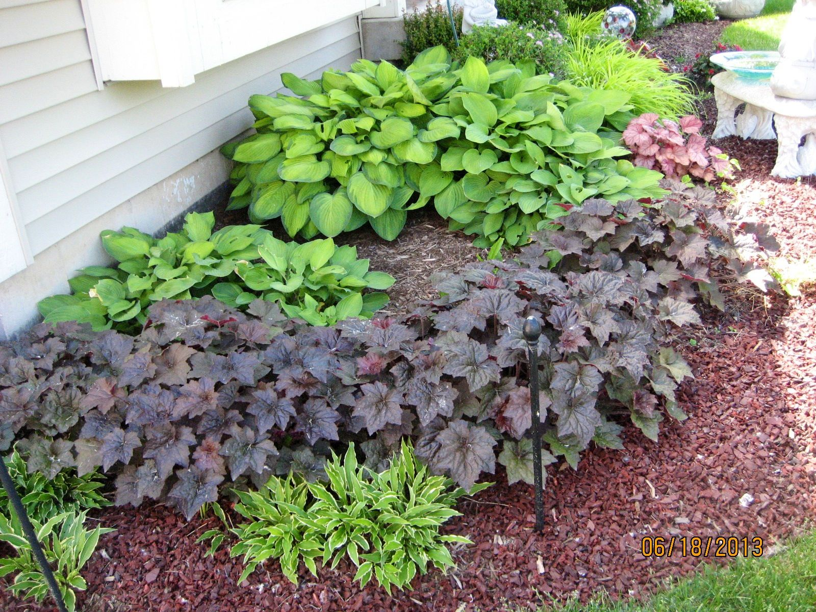 Shade plants Green thumb