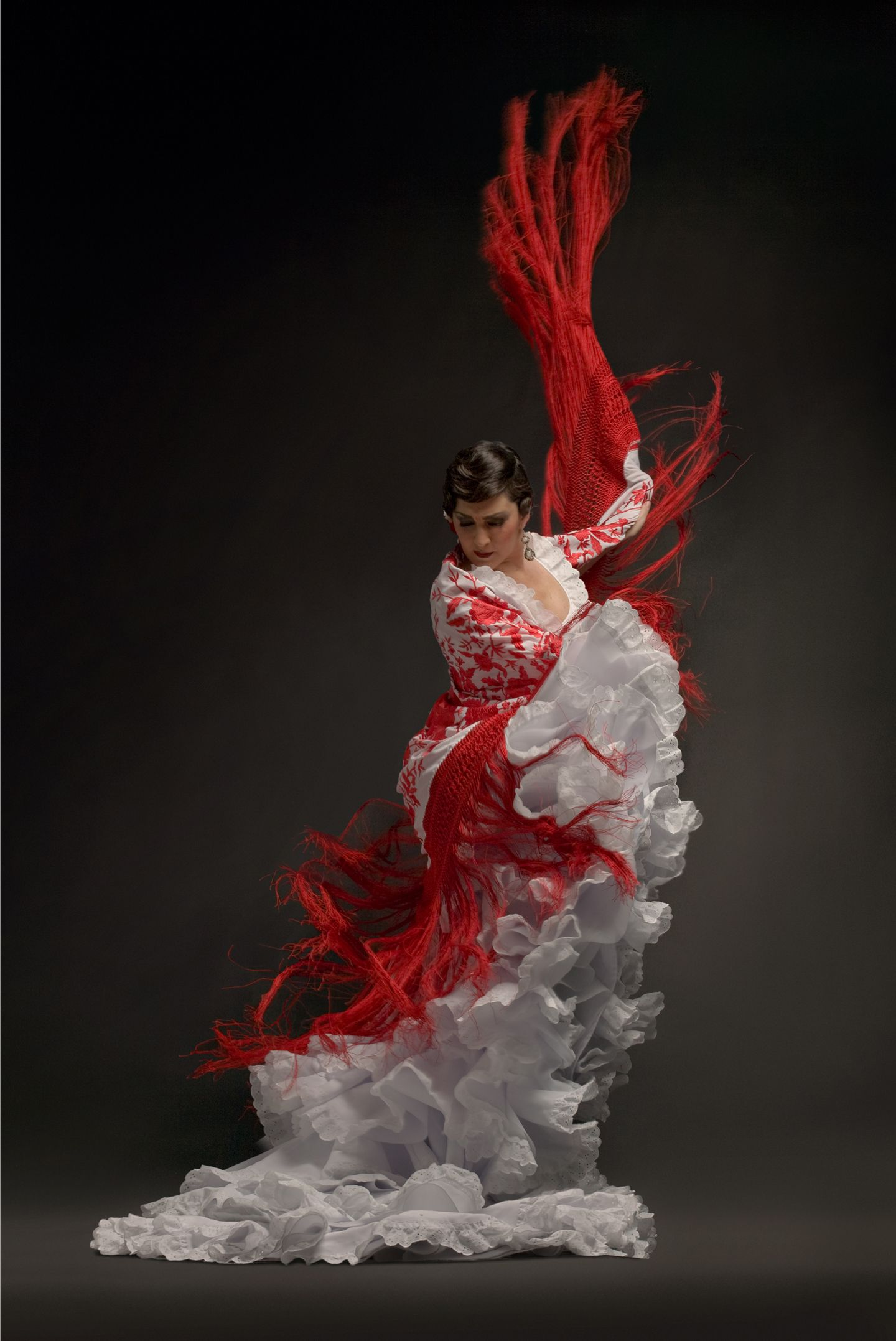 Flamenco   Beautiful s...