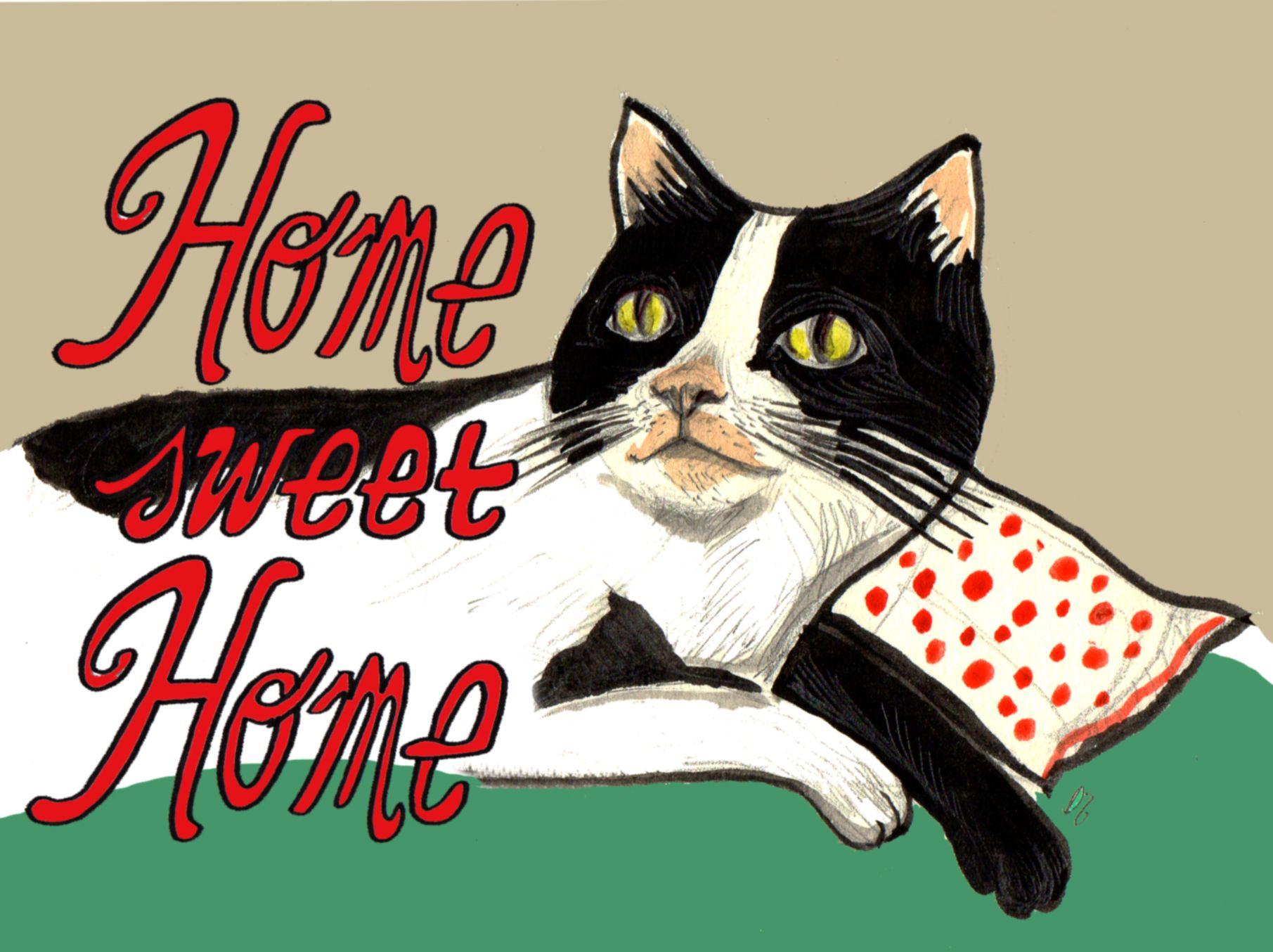 Pornostar sweet cat quotes