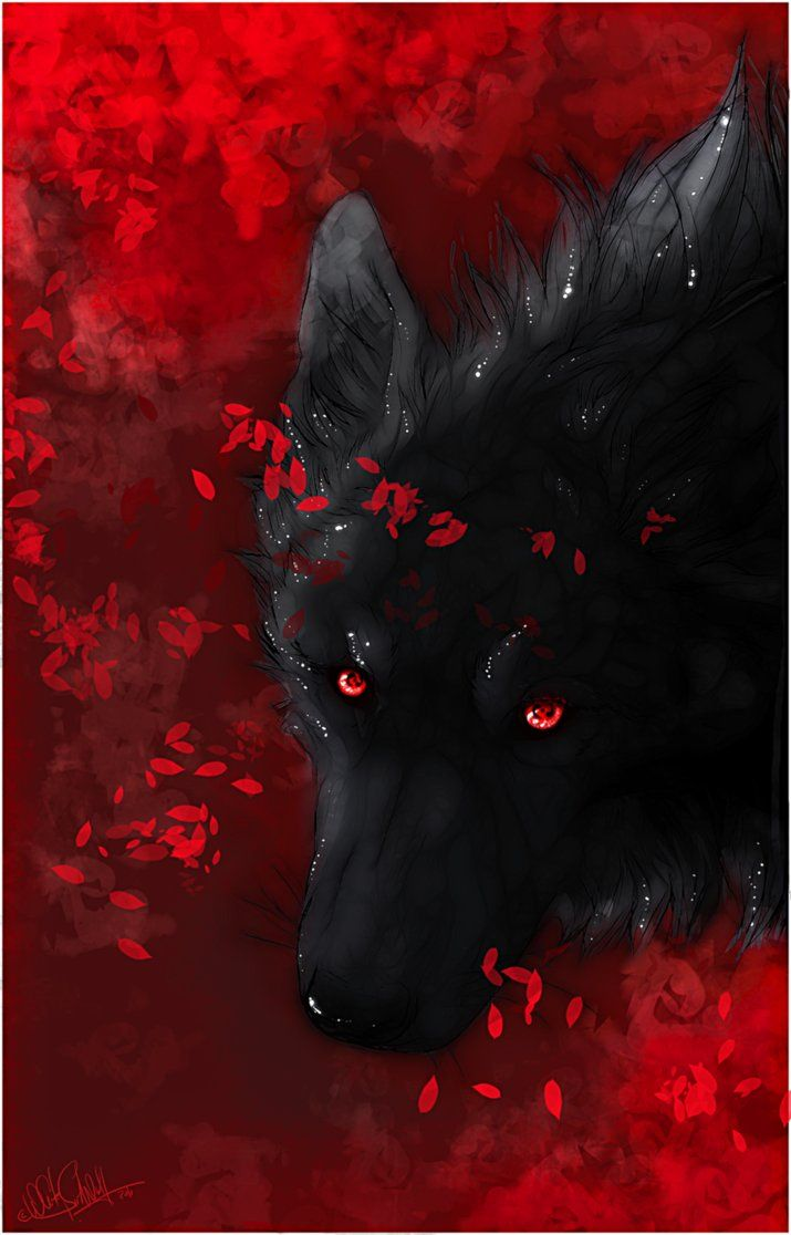 Red wolf eyes