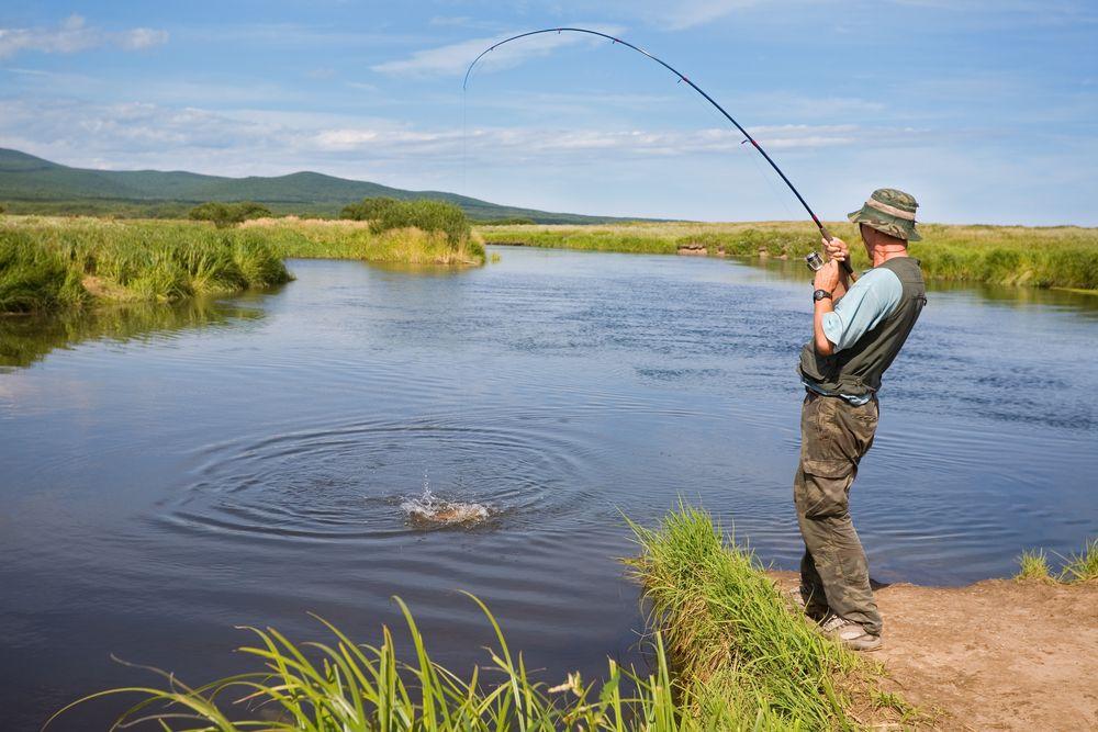 Fishing in greer arizona arizona pinterest for Fishing in az