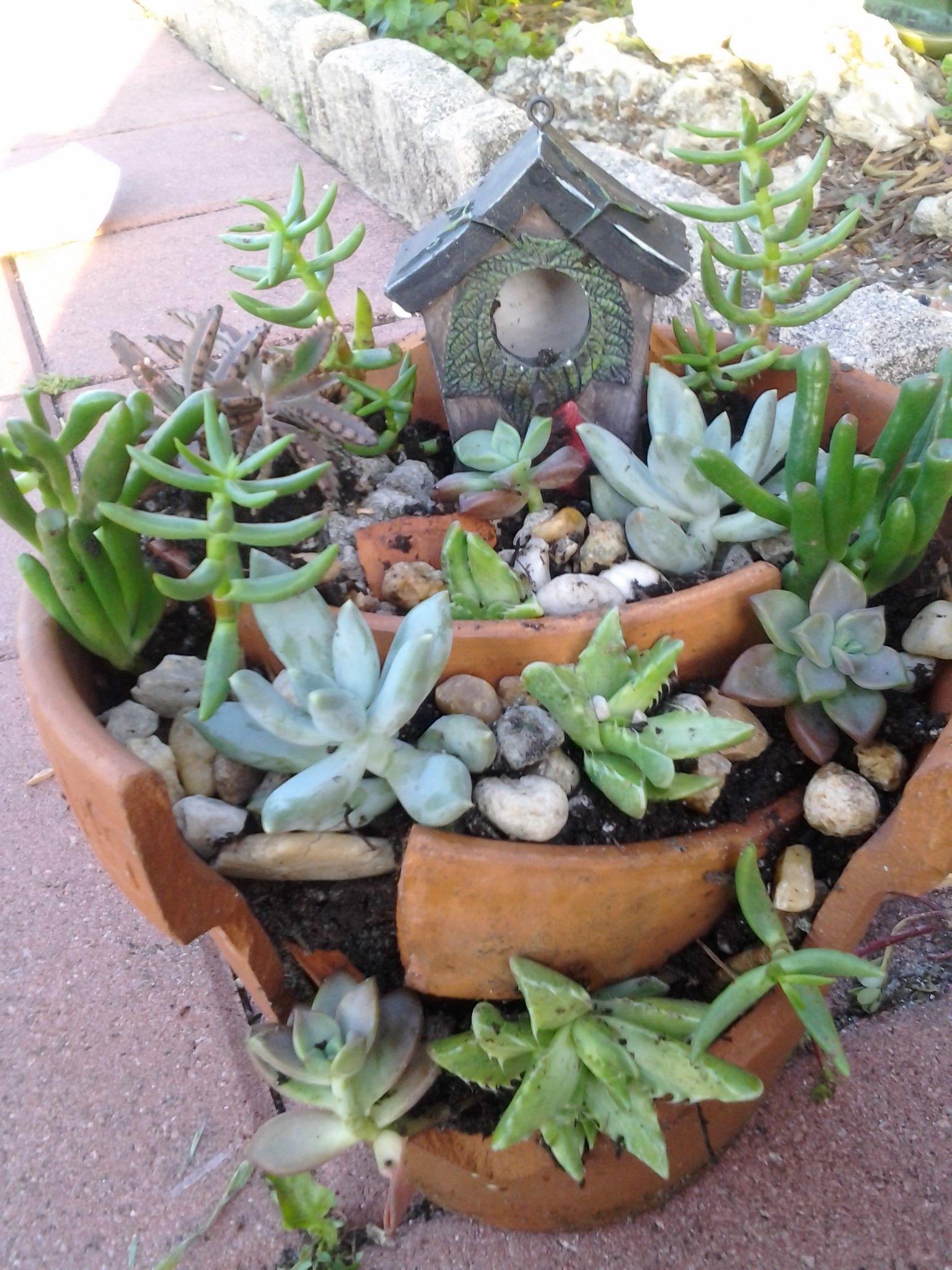 Come costruire mini giardini dai vasi rotti profy giac for Costruire giardini