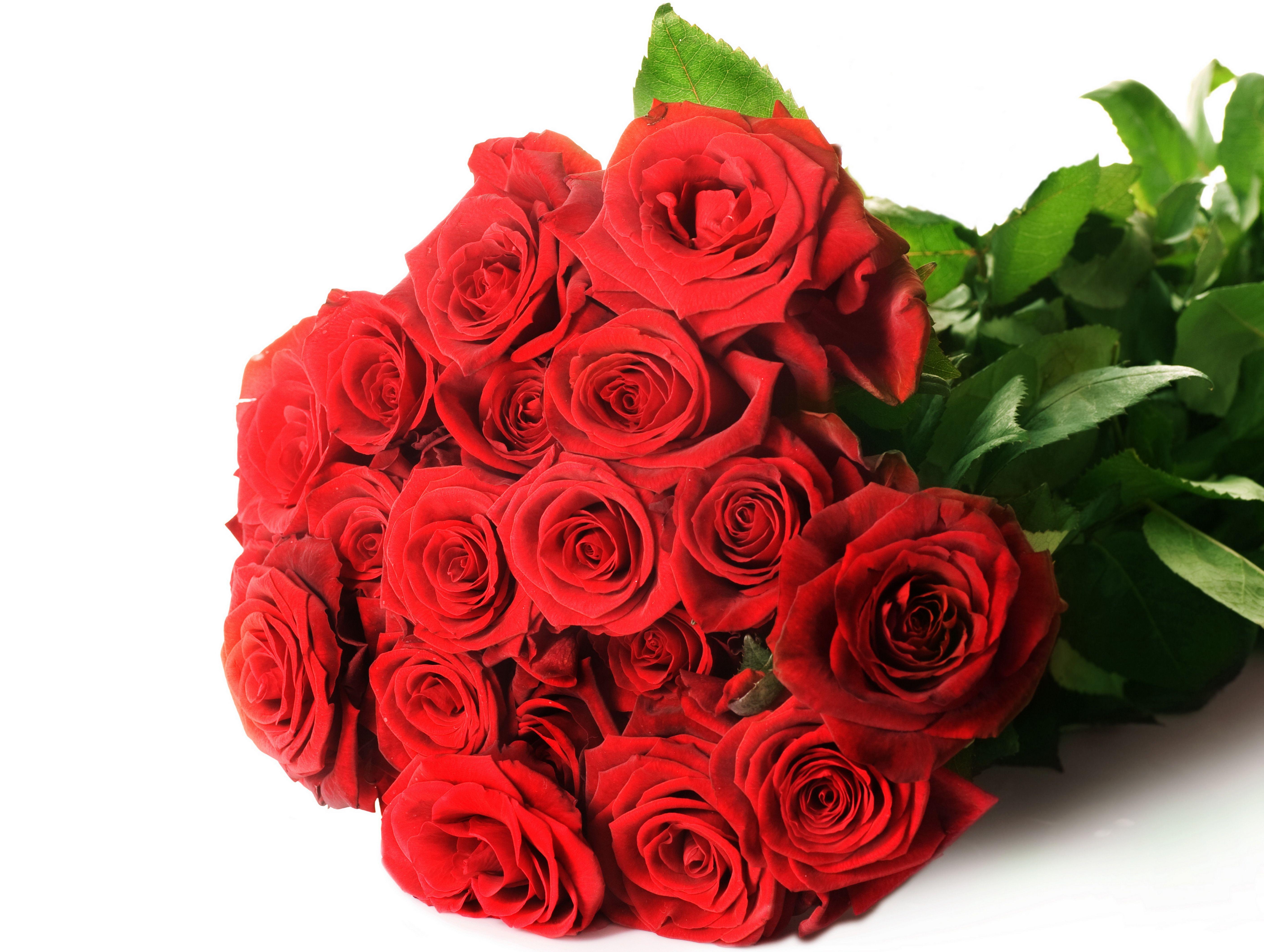 Цветы букеты большие картинки розы красные