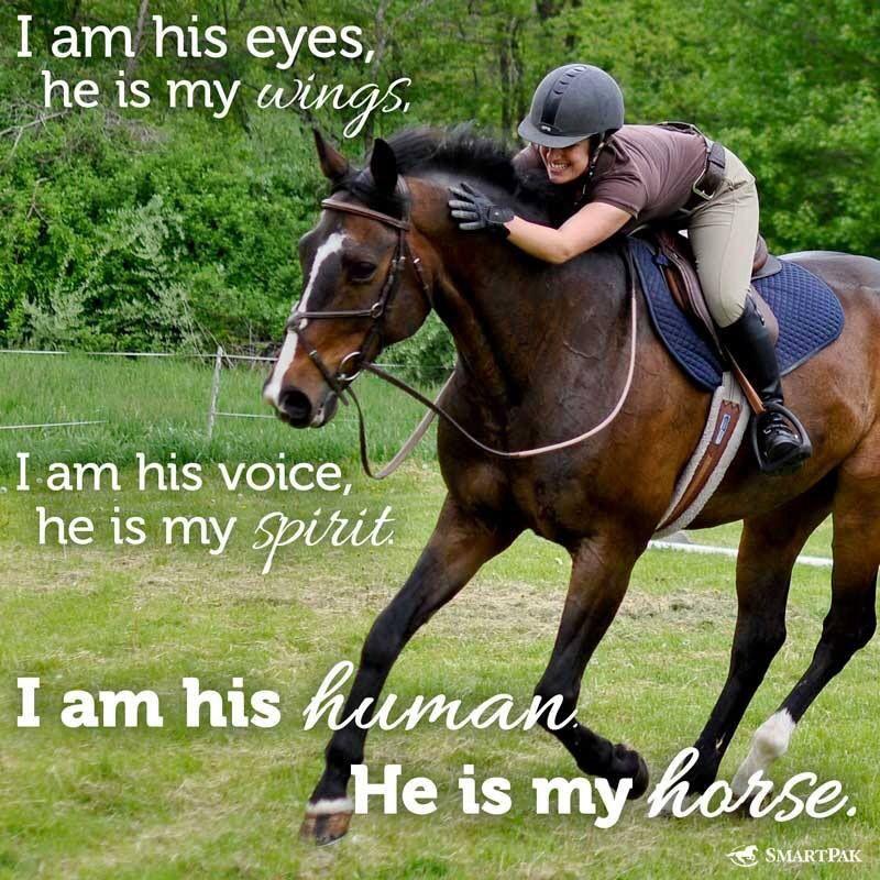 Cool Horse Riding Quotes. QuotesGram