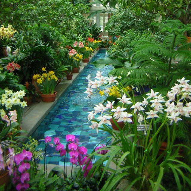 Washington Dc Botanic Gardens Places I 39 Ve Been Loved Pinterest