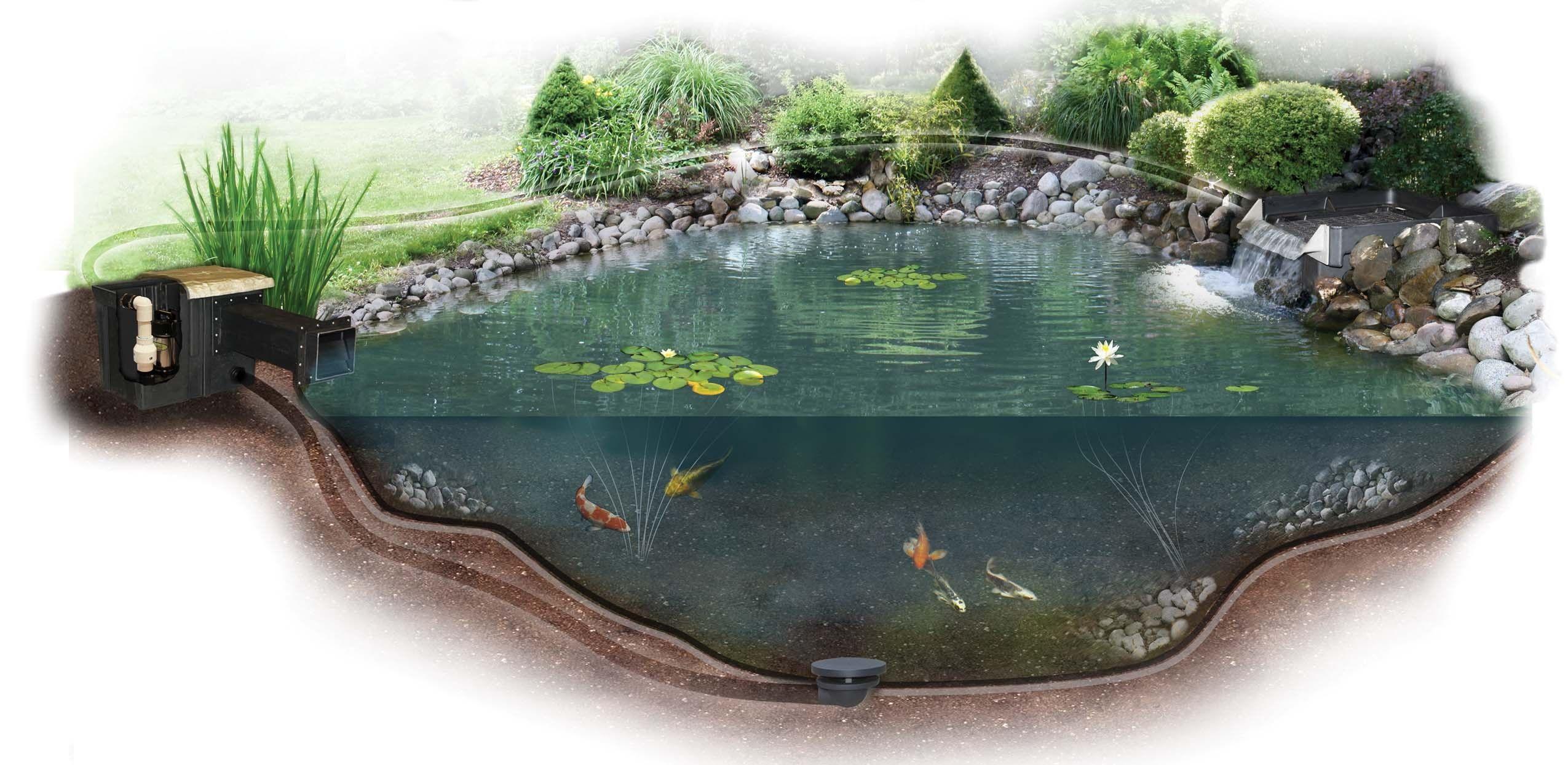 Искусственный водоем для рыбы своими руками