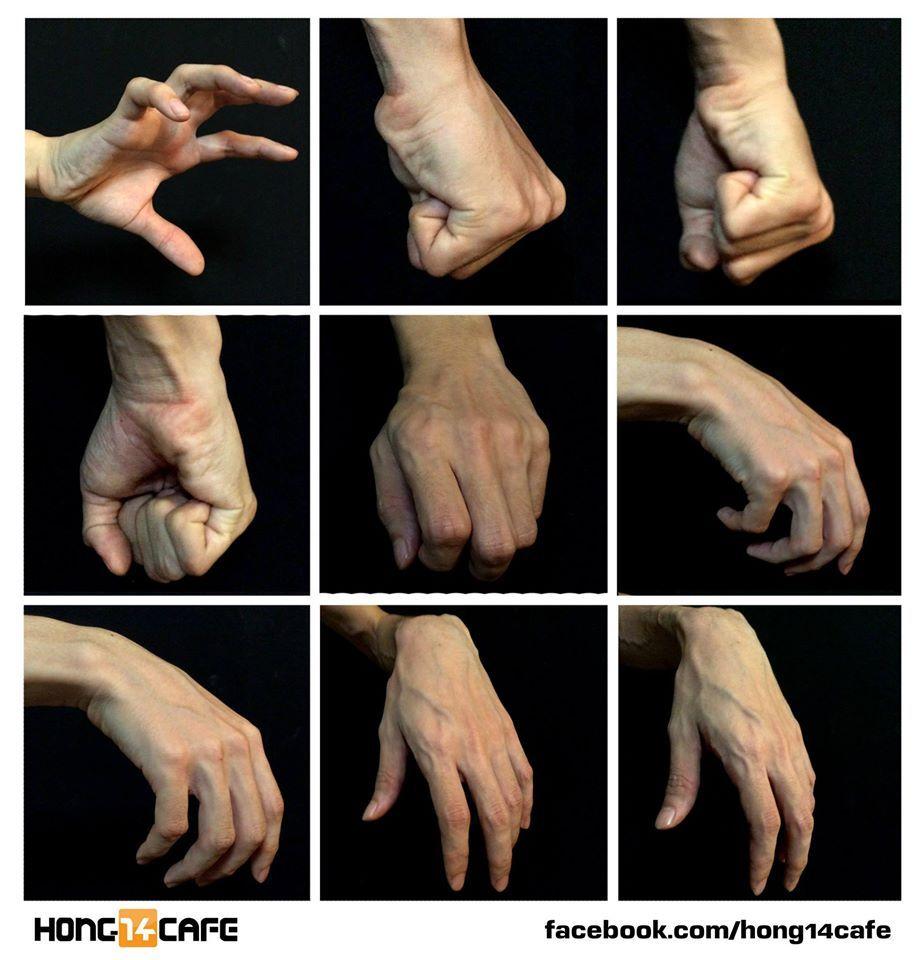 Hand skin anatomy
