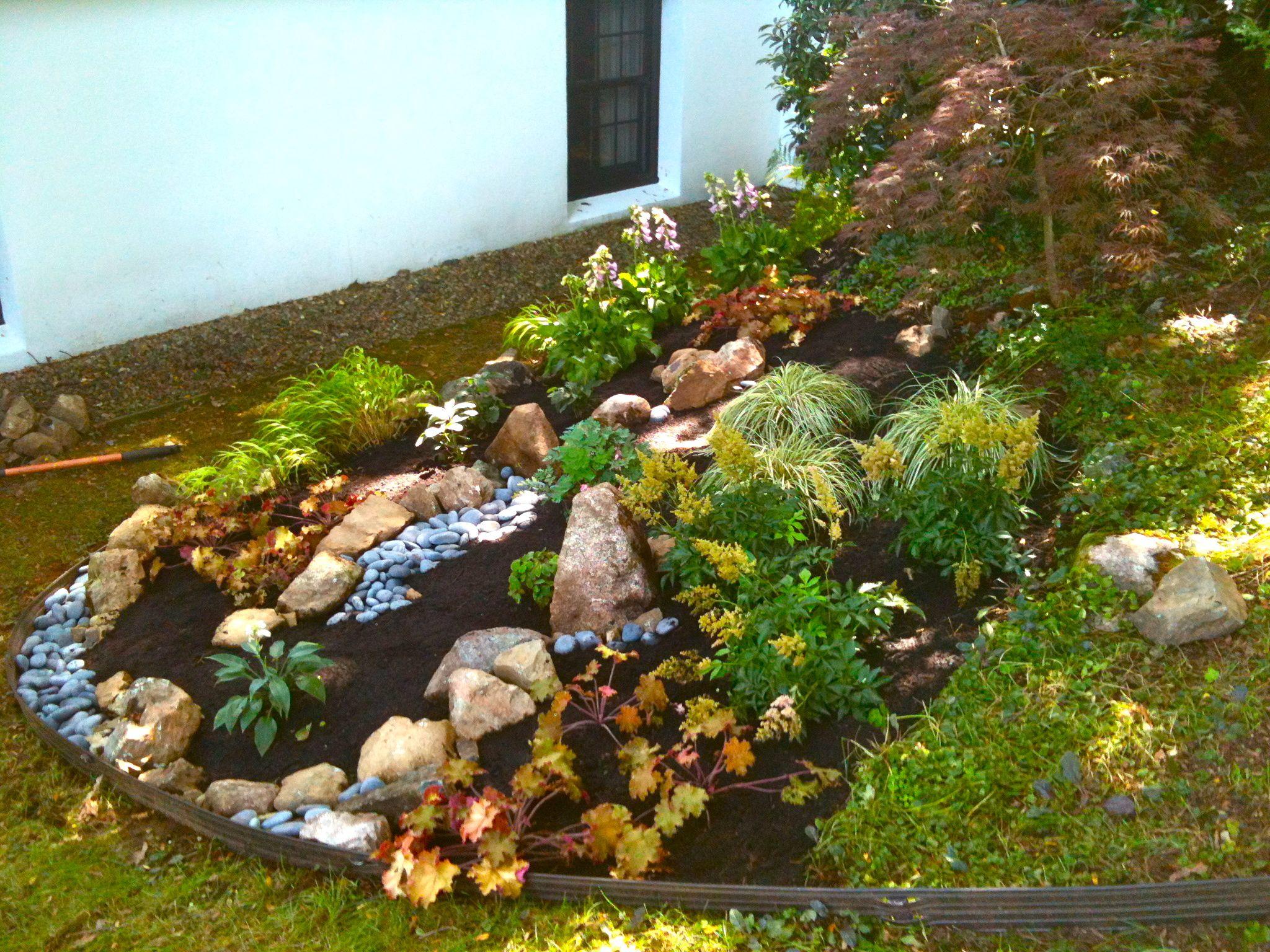 Rock garden shade planting cmc design c design gardens for Rock garden designs shade