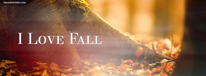 Pin by Judith D. Collins Consulting on Fall for Autumn | Pinterest