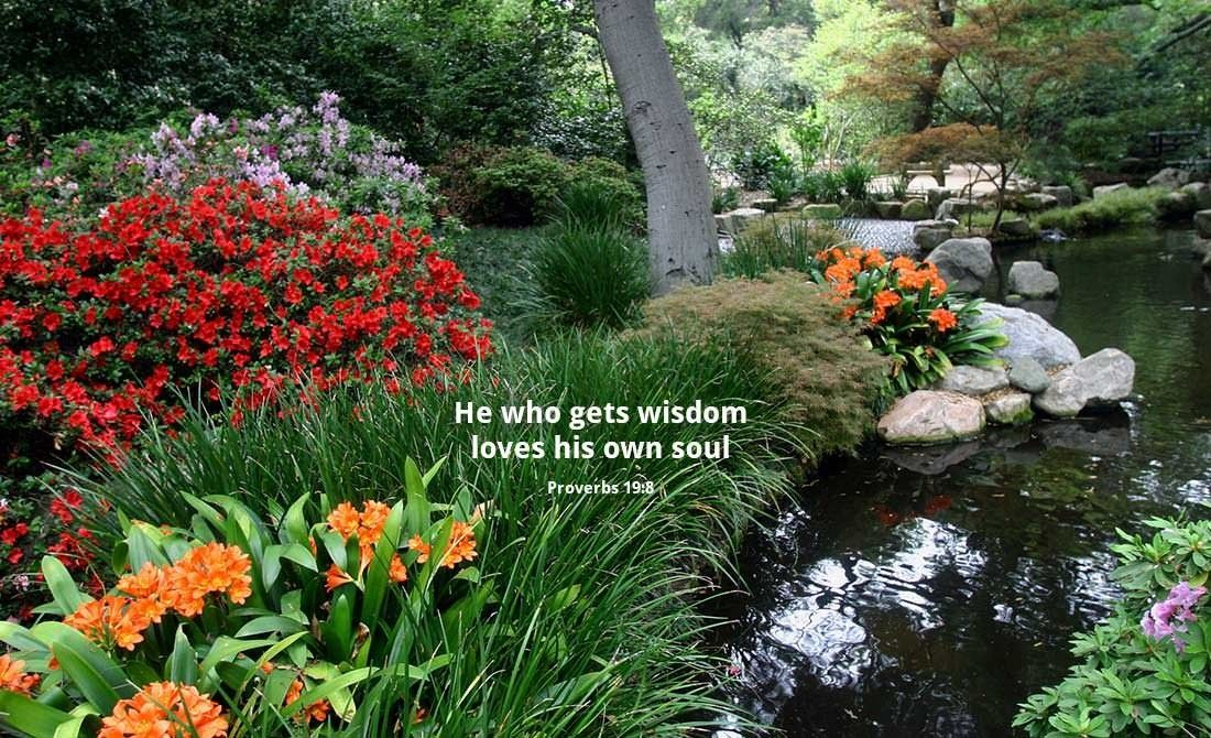 Bible quotes with b gardens quotesgram for Garden design bible