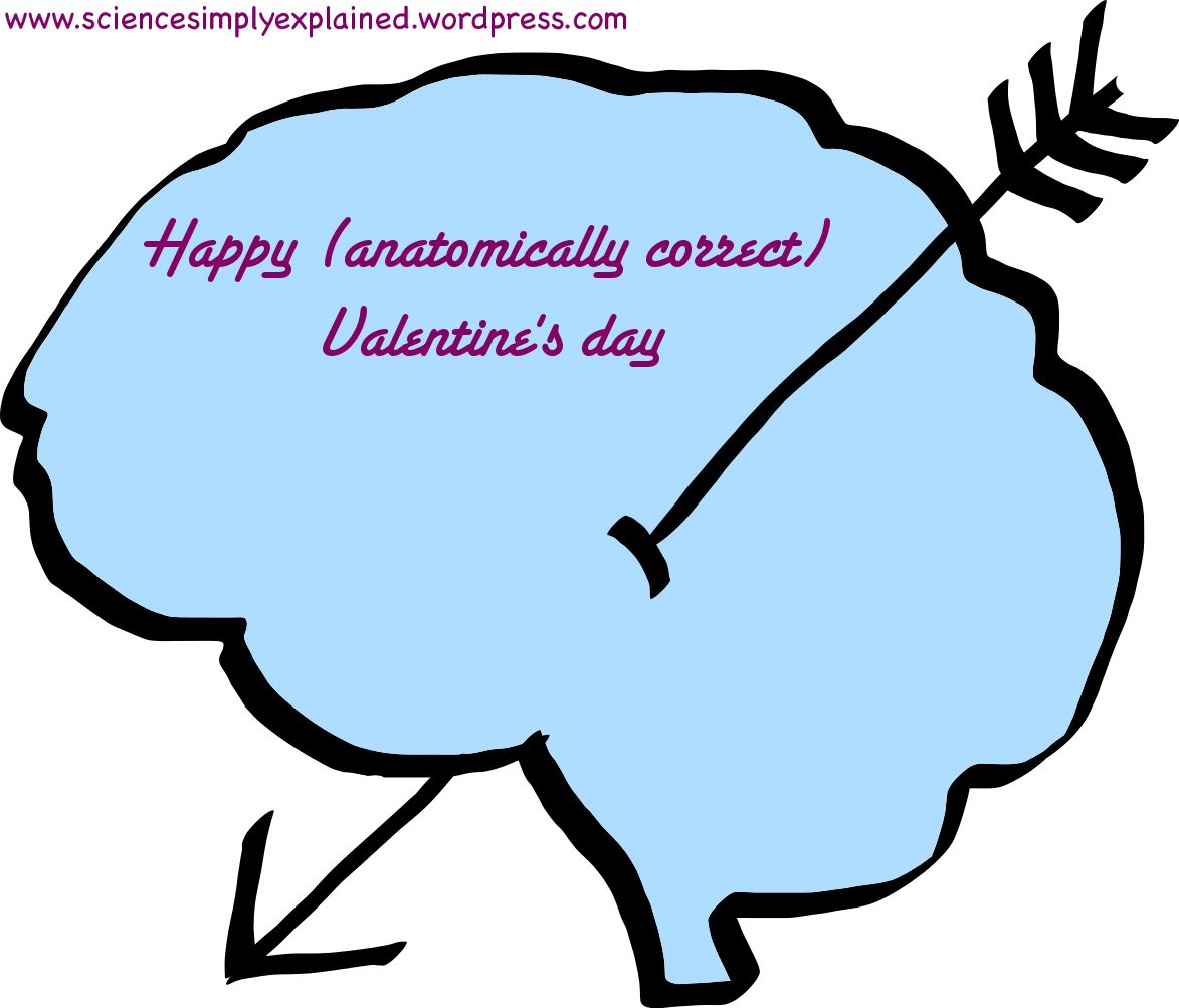 happy valentine correct