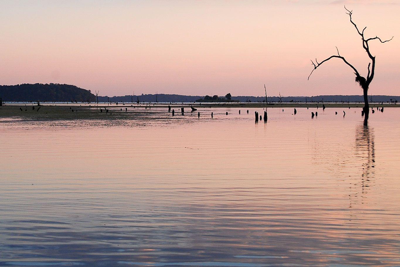 lake seminole georgia bass fishing pinterest