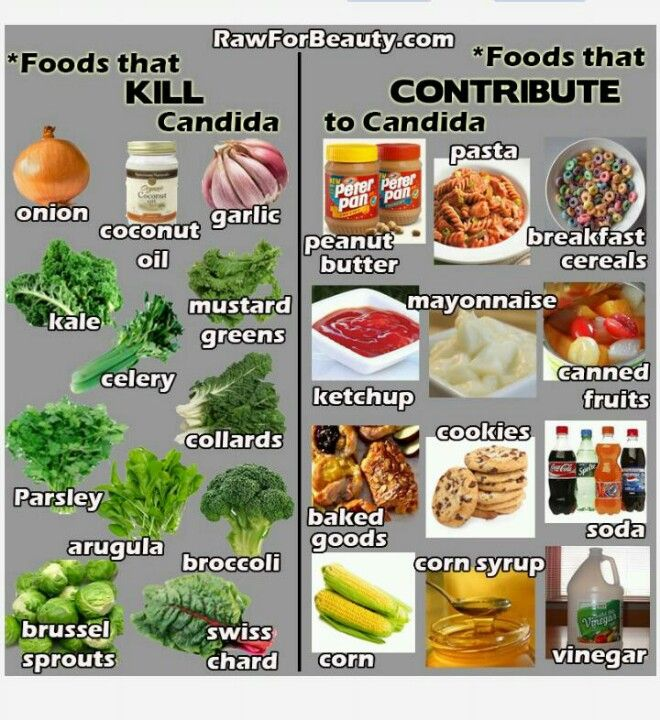 Candida causing foods candida diet recipes pinterest for Cuisine for a cause