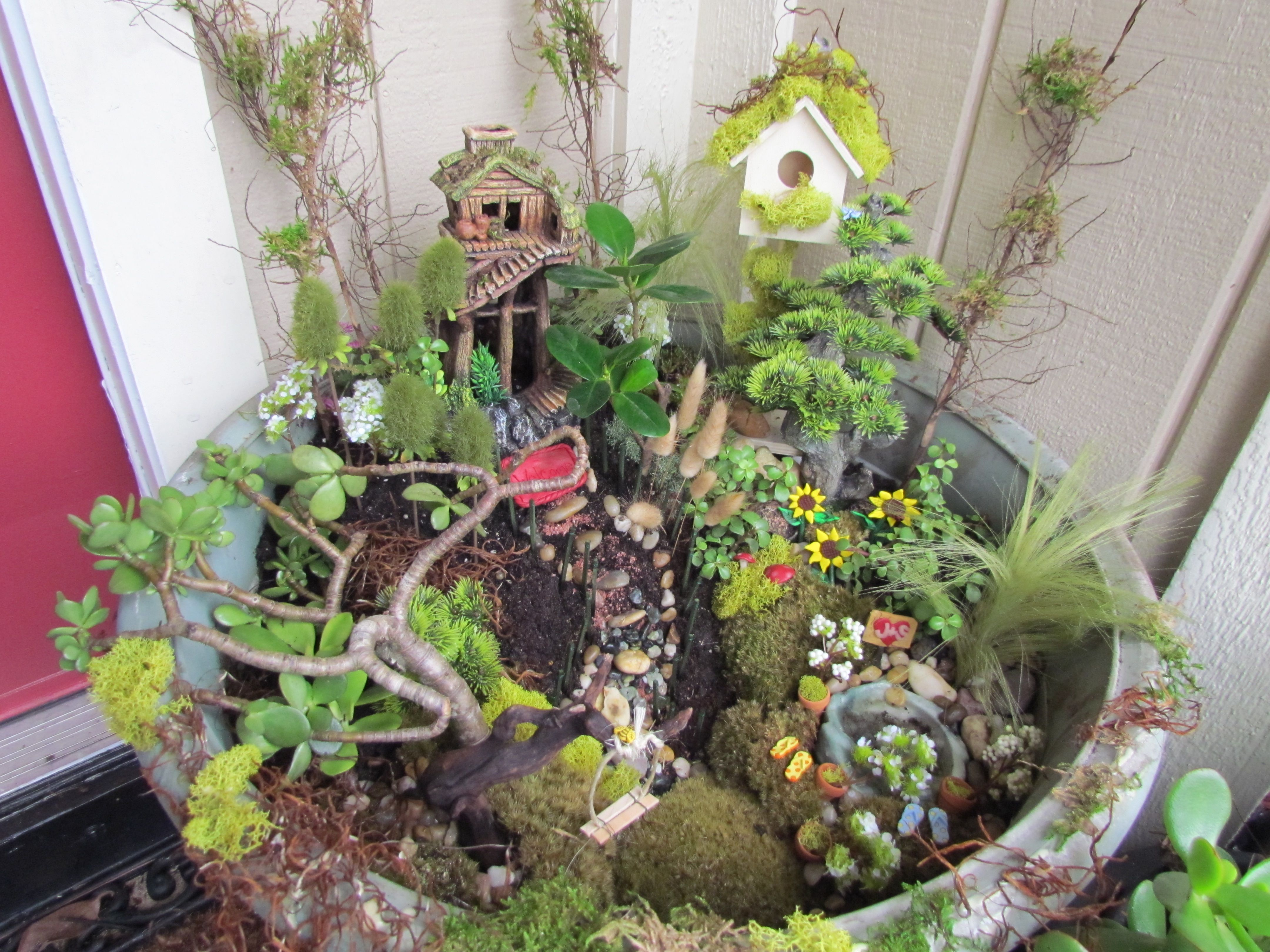 Pinterest Everything Gardening Pictures To Pin On