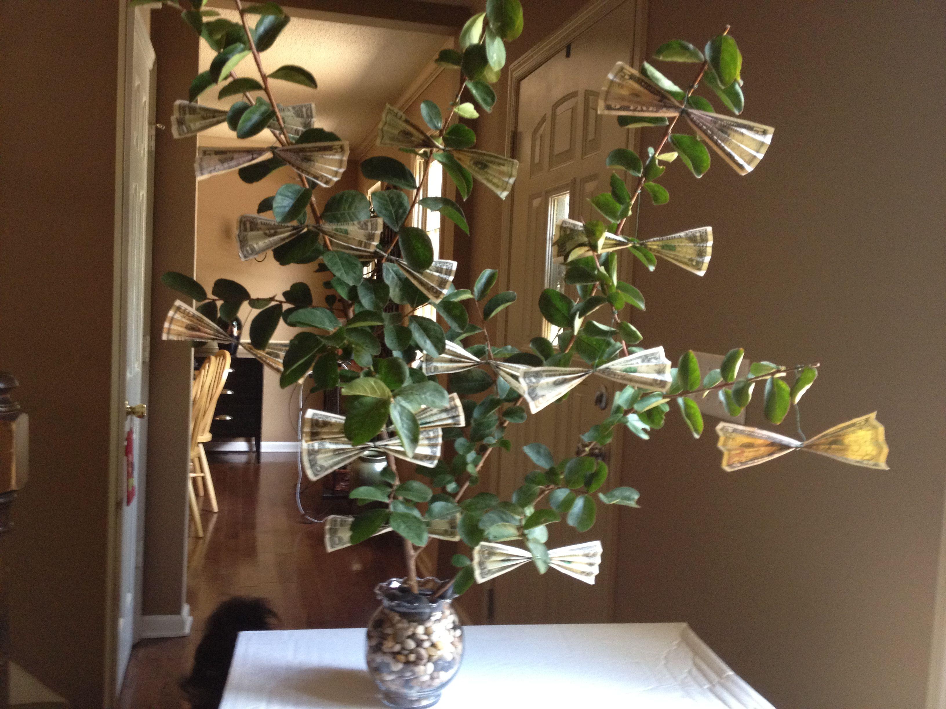 Money tree crafty decor pinterest
