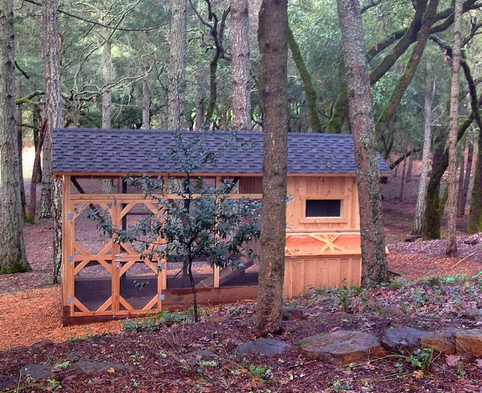 our beautiful chicken coop chicken coops pinterest