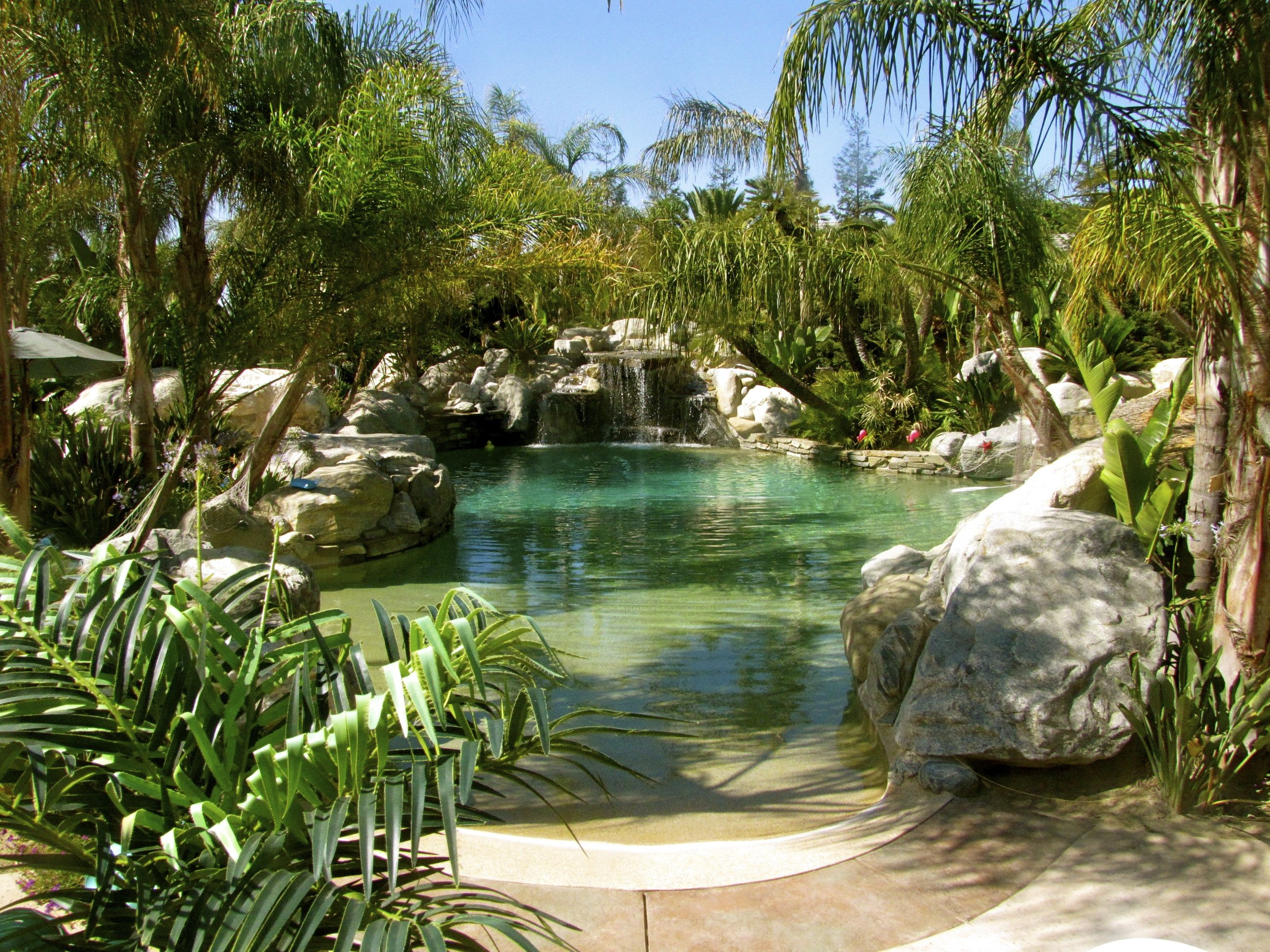 Backyard oasis for the home pinterest for Garden oases pool