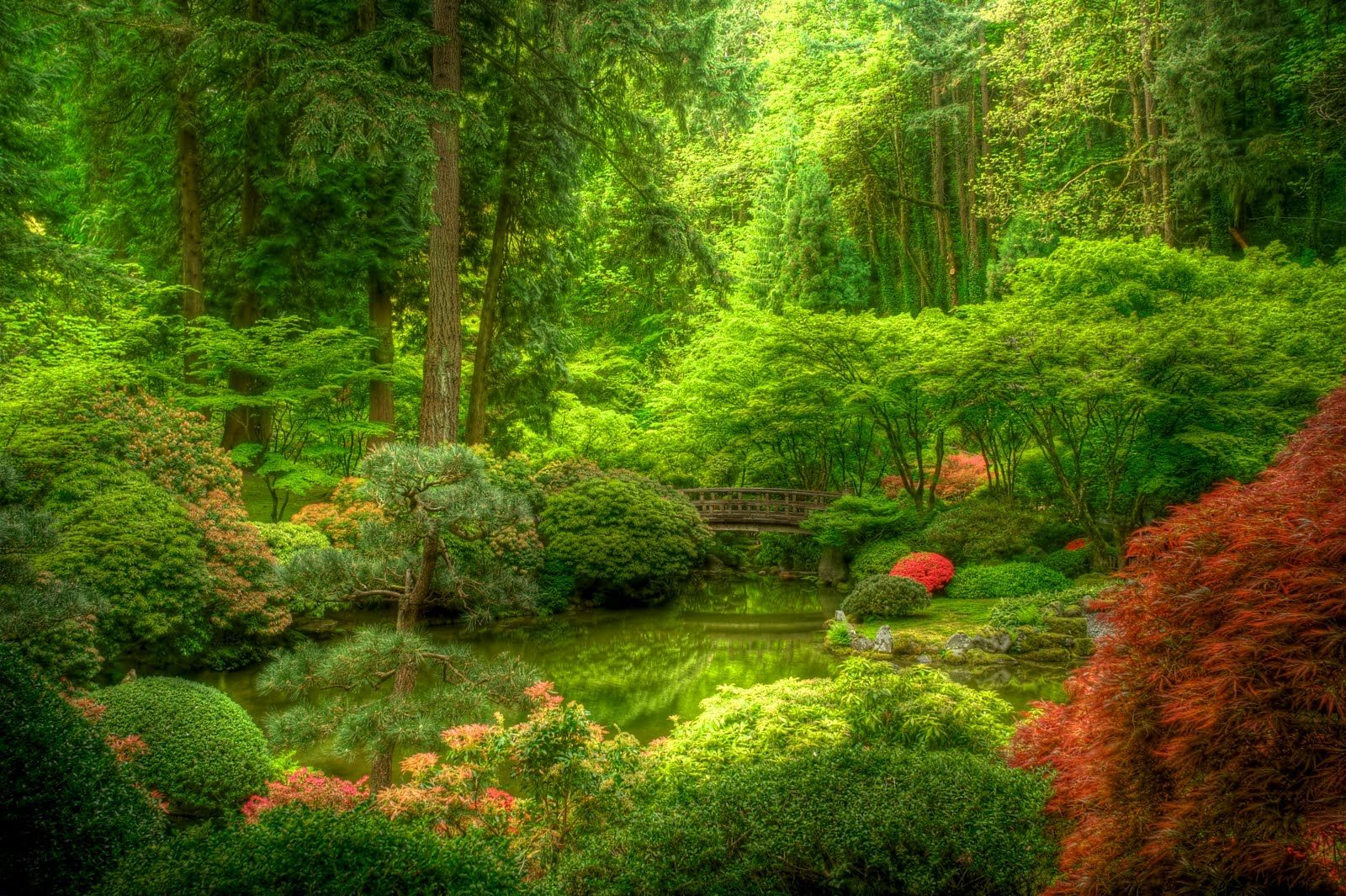 Japanese Gardens Portland Or Gardens Pinterest