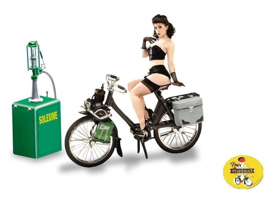 Logo motob cane garage station service mobylette 50v solex for Garage moto courbevoie