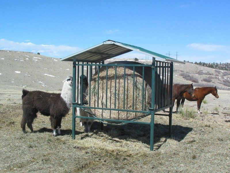 Homemade Goat Hay Feeder Plans | Trend Home Design And Decor