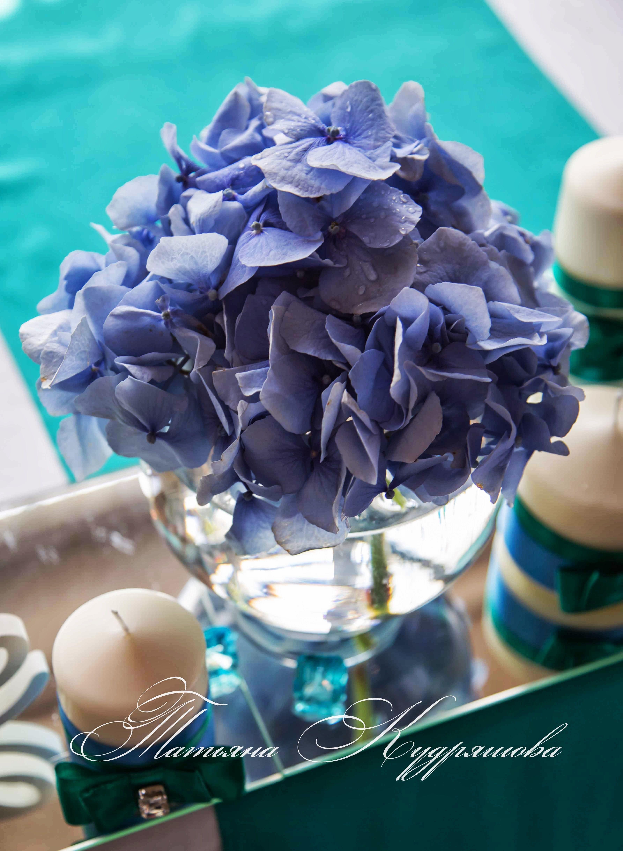 Оформление свадьбы sweet wedding pinterest