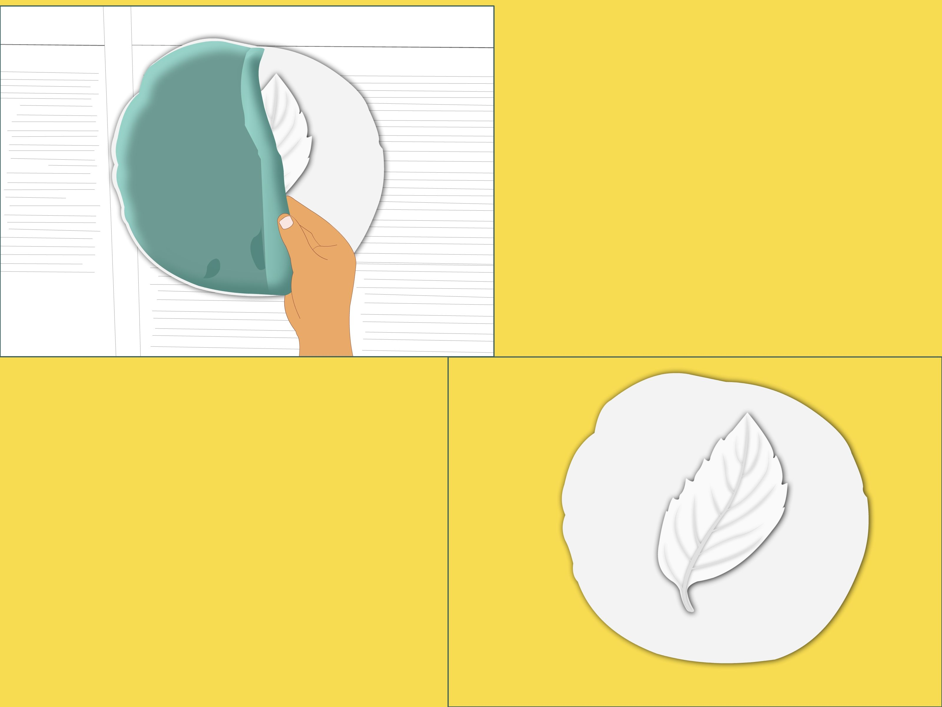 How to Make Fossils Using Plaster of Paris