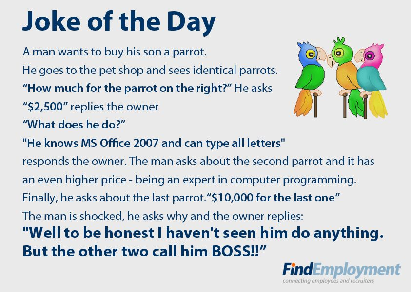 Boss joke Humor Pinterest