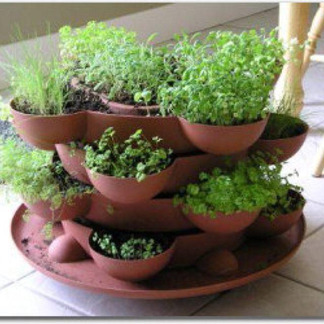 indoor herb garden ideas photograph indoor herb garden for
