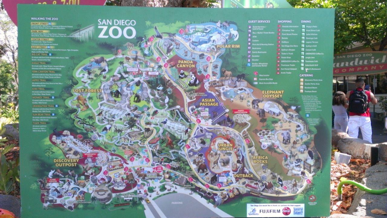 San Diego Zoo Map   Travel   Pinterest
