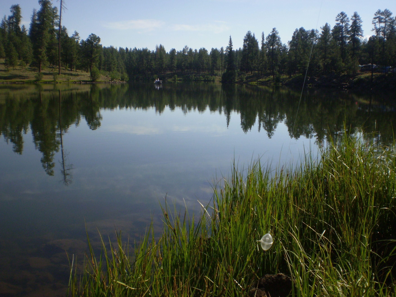 big lake arizona - photo #33