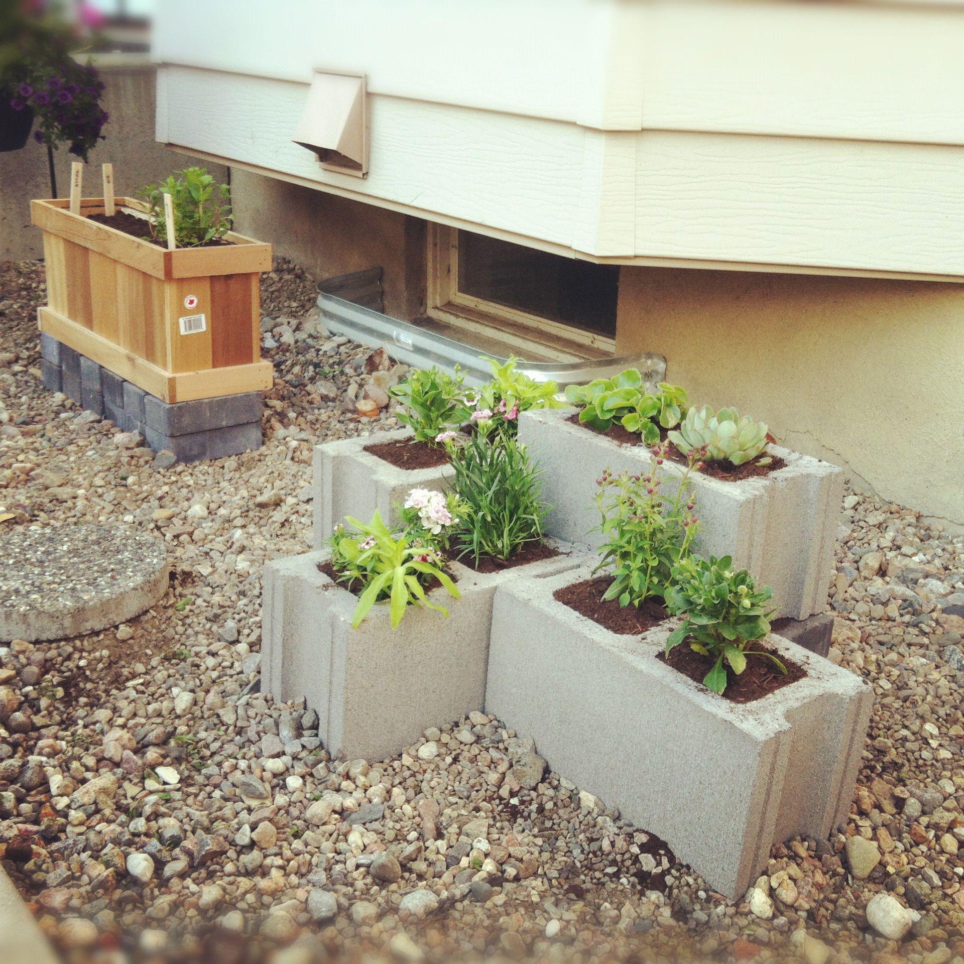 Cinder Block Garden My Version Crafty Pinterest