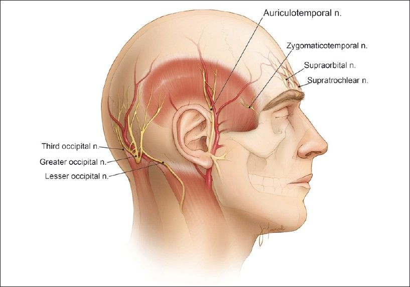 What is Suboccipital Neuralgia with pictures