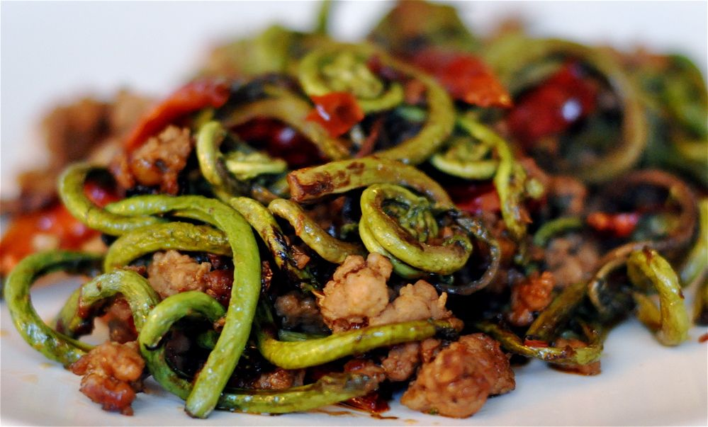 fiddlehead | recipes | Pinterest