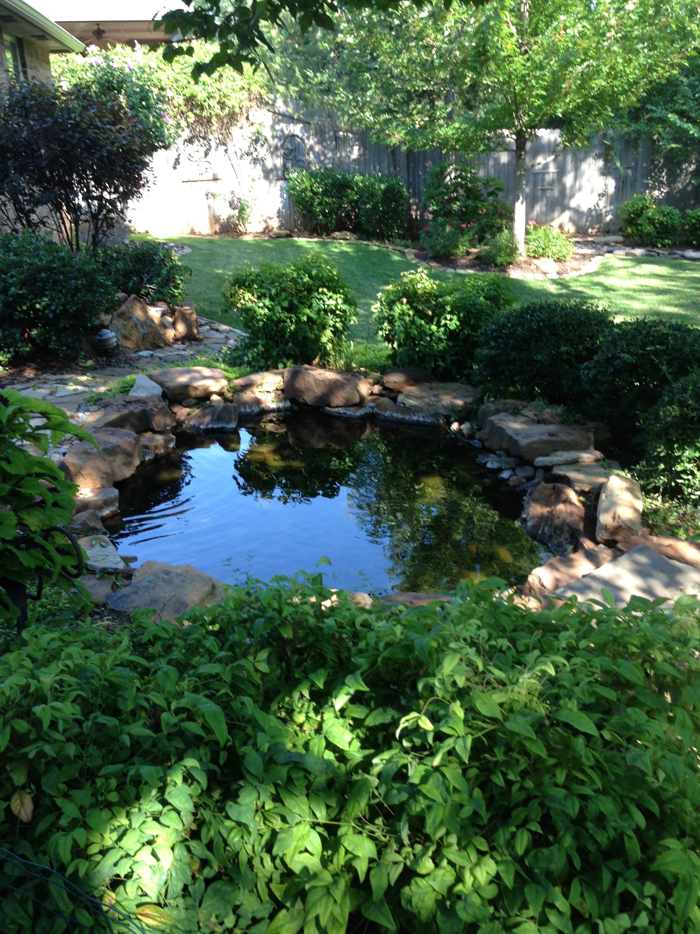 Koi pond home modern house for Fish pond at home