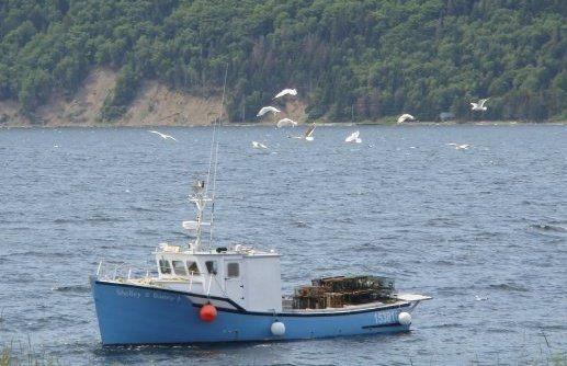 Fishing boat in nova scotia canada pinterest for Nova scotia fishing